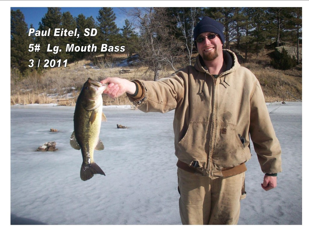 Nice largemouth thru the ice, Paul!